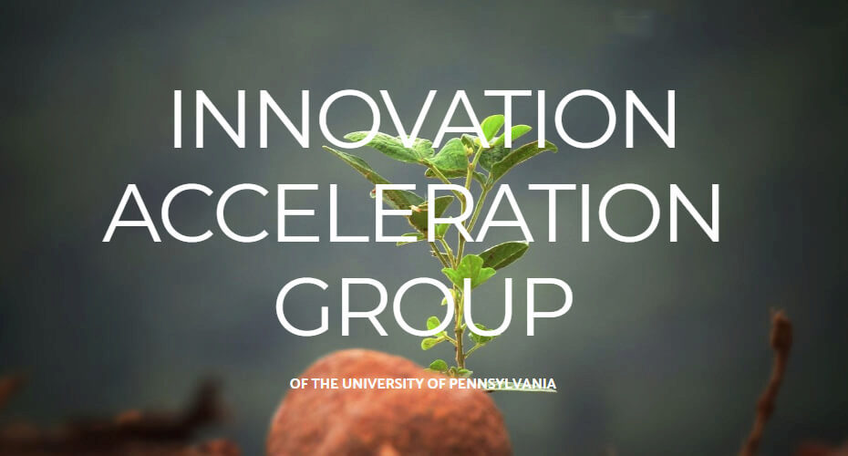 Innovation Acceleration Group